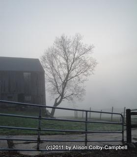 Fog on Barker Farm