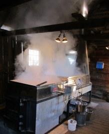 IMG_3968 Maple syrup production