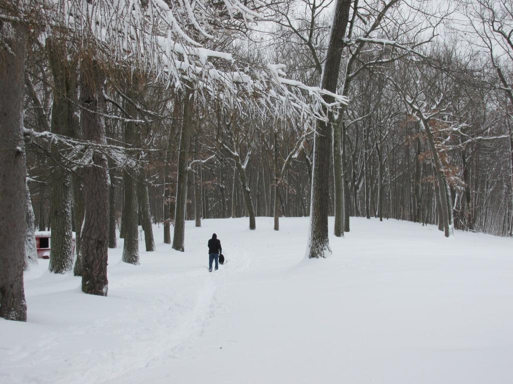 Haverhill Winter trail hike w dog