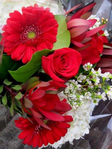 IMG_3197 Valentines blog flowers