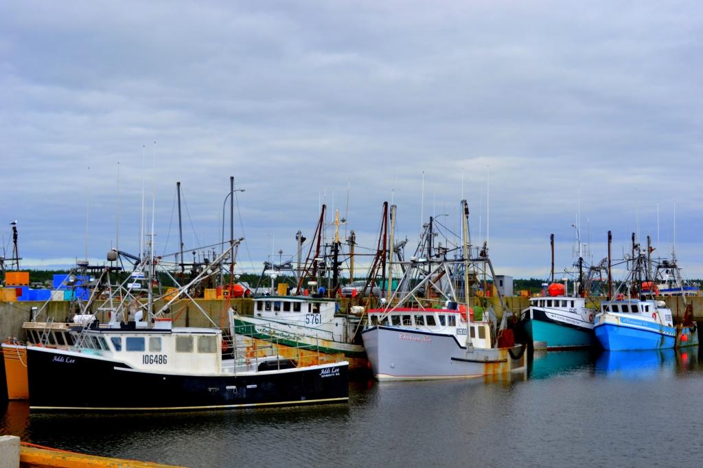DSC_0410 Nova Scotia trip June 2014