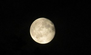 IMG_3510 Super moon August 2014