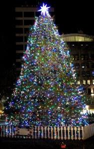 Let us remember our tree as stately and bright (Full disclosure, not our actual tree.This one is in Boston supplied by the Province of Nova Scotia.)