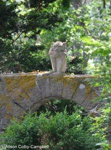 DSC_0392 Hammond Castle June 13