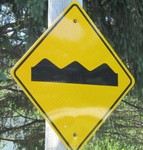 IMG_0845 Road Signs NS
