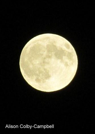 IMG_3516 Haverhill Full Moon Eclipse 09.27.2015