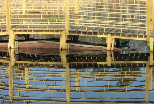 IMG_2413 Topsfield Audubon Ipswich River