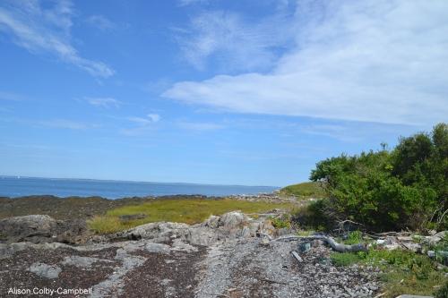 dsc_1353-biddeford-me-wood-island-lighthouse-trip
