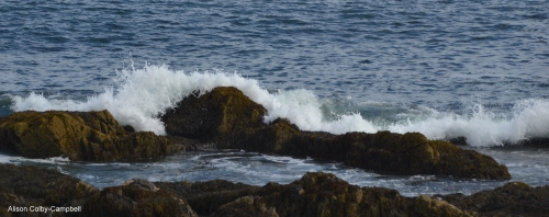 dsc_1506-biddeford-me-wood-island-lighthouse-crashing-waves