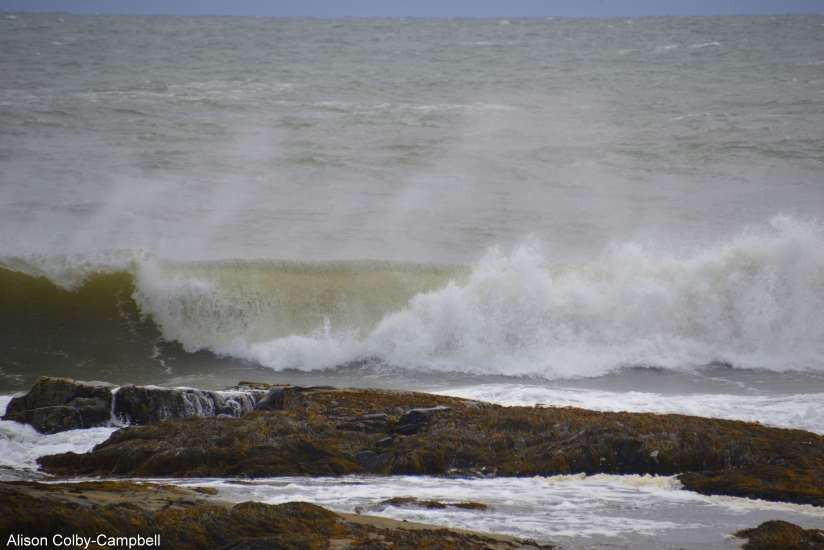 DSC_3550 Hampton.Rye Waves pre Joaquim Hurricane Oct 3 2015