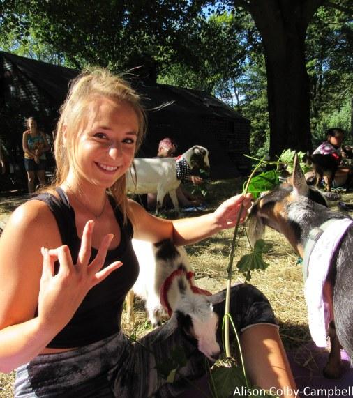 IMG_8153 Boxford Merril Goat Yoga with Logan and Sloan