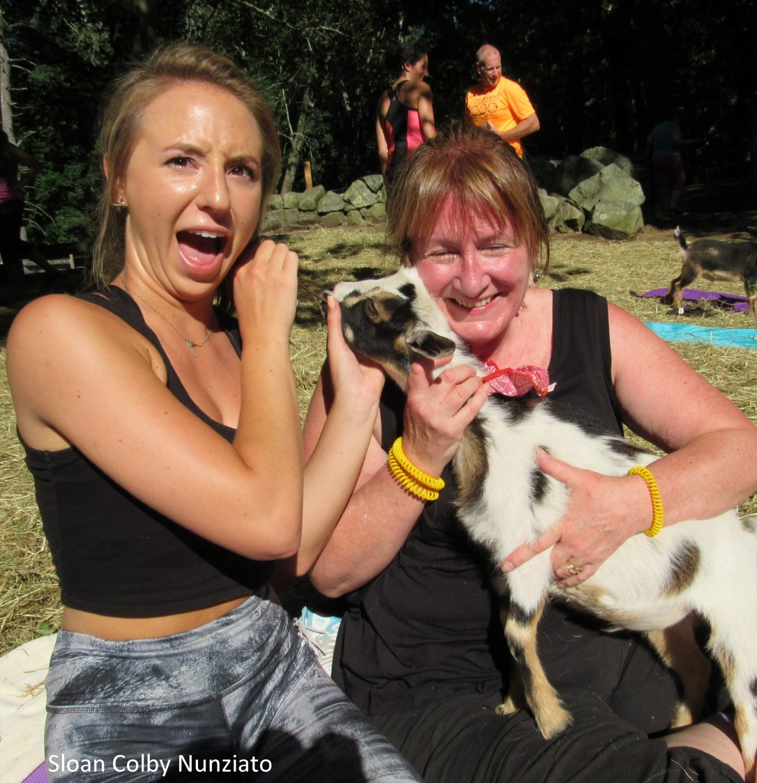 IMG_8165 Boxford Merril Goat Yoga with Logan and Sloan