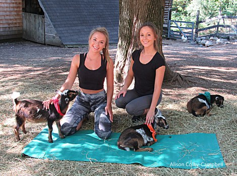 IMG_8186 Boxford Merril Goat Yoga with Logan and Sloan