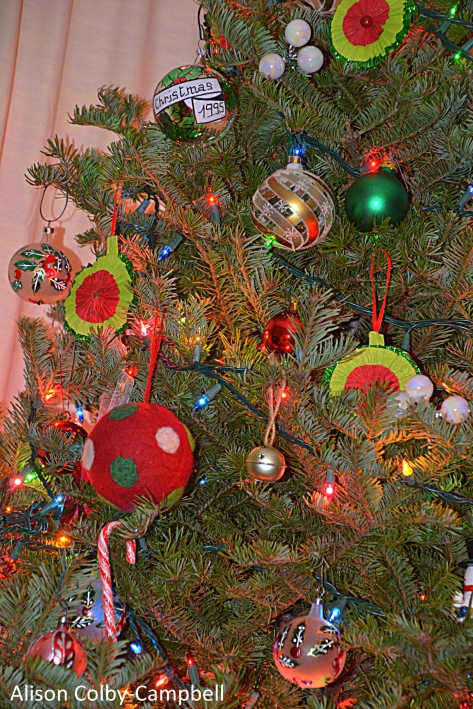 DSC_3092 Haverhill Christmas tree eulogy 2017