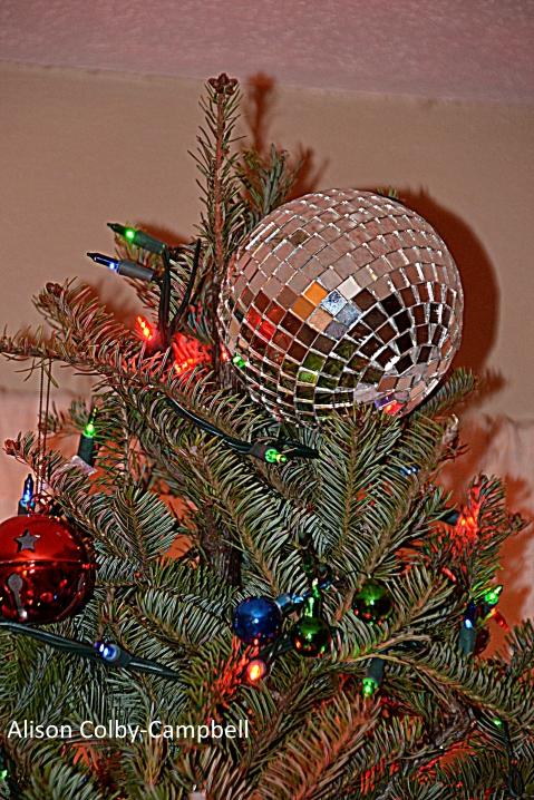 DSC_3100 Haverhill Christmas tree eulogy