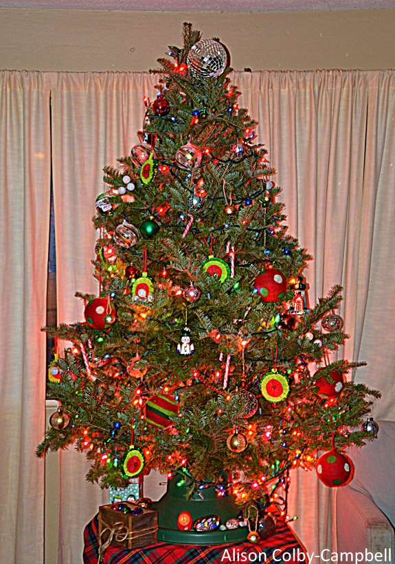 DSC_3111 HAverhill Christmas tree eulogy