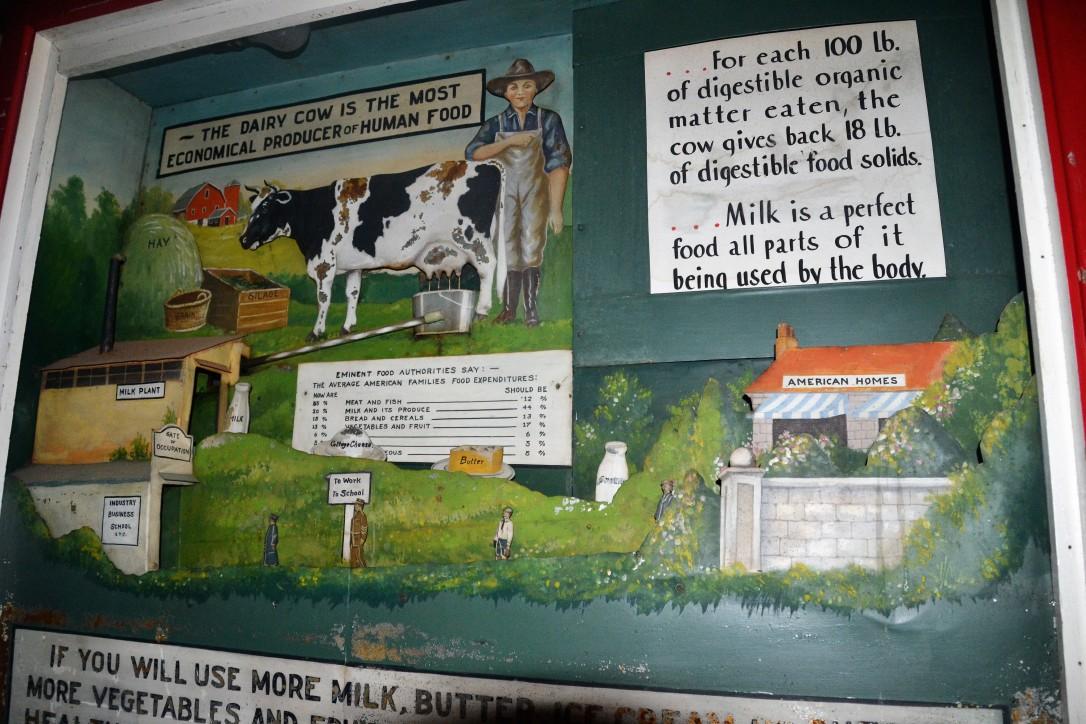 DSC_6053 (2) Hollis ME (c)Alison Colby-Campbell Petes Place Antiques Milk Diorama