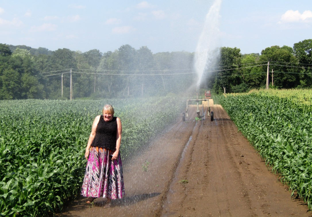 IMG_1777 HAV (c) Alison Colby-Campbell Chrs Farm Stand watering corn august