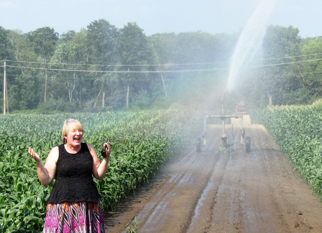 IMG_1778 HAV (c) Alison Colby-Campbell Chrs Farm Stand watering corn august